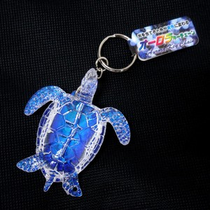 Charm Key Ring Glitter Aurora Chain