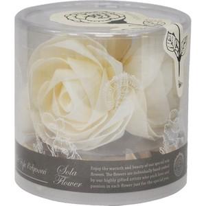 〇2019 new Sola Flower ソラフラワー Marche マルシェ Precious Rose プレシャスローズ