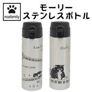Bento (Lunch Box) Product Morley Stainless bottle