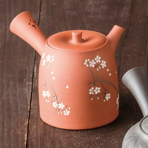 TOKONAME ware Flower Japanese Tea Pot