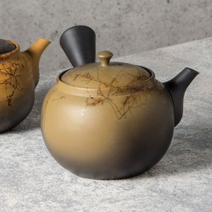 TOKONAME ware Kiln Change Circle Shape Japanese Tea Pot