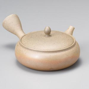 Sencha TOKONAME Ware Roasting Japanese Tea Pot