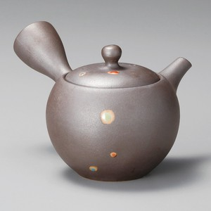 Steaming TOKONAME Ware Color Japanese Tea Pot