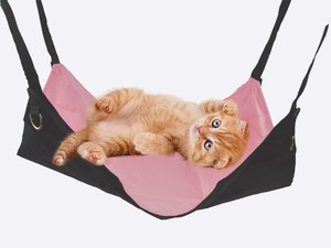 for Cat Hammock Pink Color