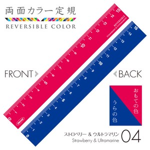 Both Sides Color Ruler