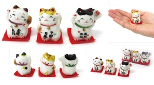 Cat Pottery Beckoning cat 3 Pcs Set