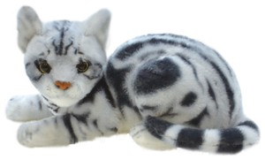Cat Soft Toy American Shorthair