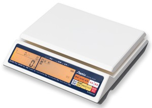 Digital Letter Scale