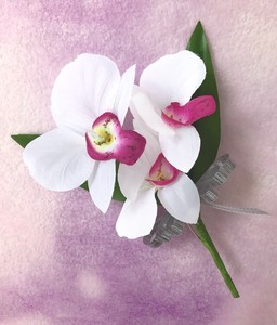 Corsage Party Graduate Admission Each Type Interior Plants White