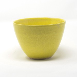 HARVEST harvest Bowl Yellow SHIGARAKI Ware