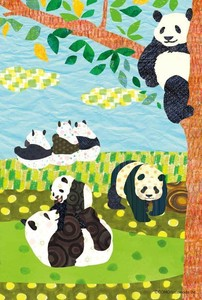 Postcard Panda Bear Afternoon