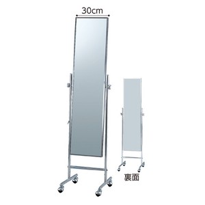 Slim Stand Alone Mirror Mirror