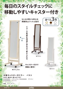 Caster Attached Move Wooden Stand Alone Mirror Assembly Furniture