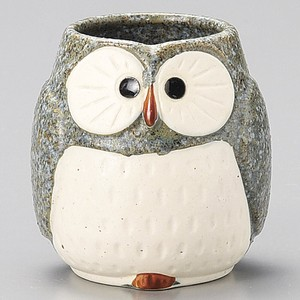 Gray Owl Japanese Tea Cup Full Water