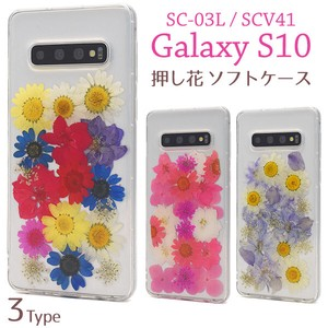 Smartphone Case Genuine Flower Use SC SC Pressed Flowers Case