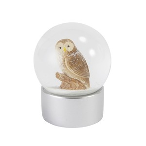 Snow Dome Owl