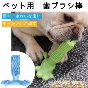 Pet Product for Dog Kamikami Toothbrush Polish Polishing Pet Toy