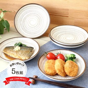 Dish 5 Pcs Plate Parsons Can Use Separately Washoku Japanese Style