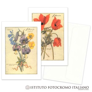 Italy Brand Greeting Card FLOWER