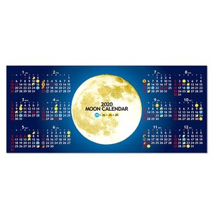Moon Graphic Calendar Postcard