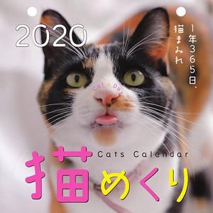 【中央経済社】カレンダー 2020年 猫めくり 日めくり