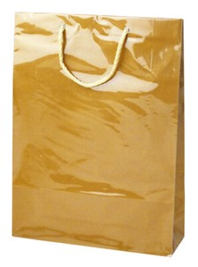 Handbag Bag Trolley Bag Vinyl Cover