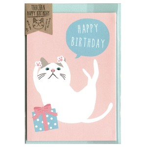 Cat cat Birthday
