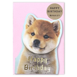 Spring Card Birthday Shiba Dog Dog Birthday