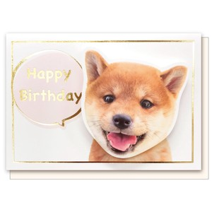 Dog Birthday Card Shiba Dog Birthday
