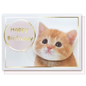 cat Birthday Card Cat Birthday