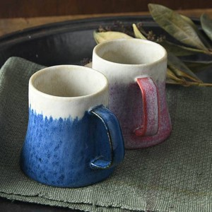 Mt. Fuji Mug Make Up Gift Set MINO Ware