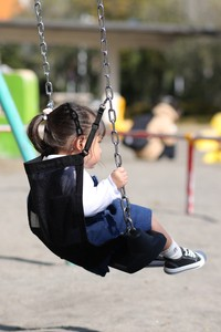 Swing Safety Net