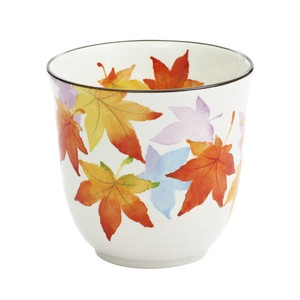 Mino Ware 1Pc Autumn Leaves Japanese Tea Cup