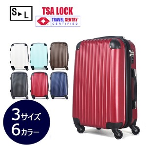 Carry Case Suit Case Caster Trip