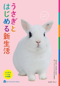 A new life with a rabbit