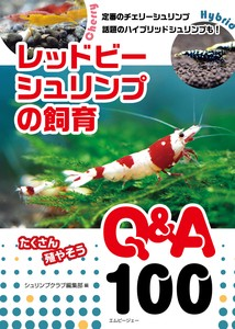 Red Bee Shrimp Breeding Q & A100