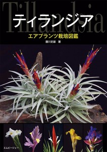 Tiranzaa Air Plants cultivation picture book