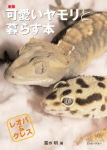 New book with a cute gecko