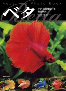 Aquarium Photo Book Solid