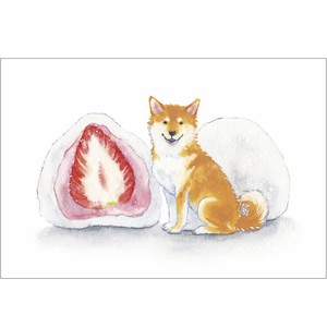 Snack Postcard Shiba Dog Strawberry