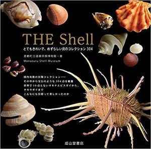 The Shell 綺麗で希少な貝類コレクション303