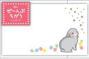 MIN CARD Rabbit
