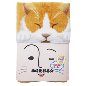 Cat Towel