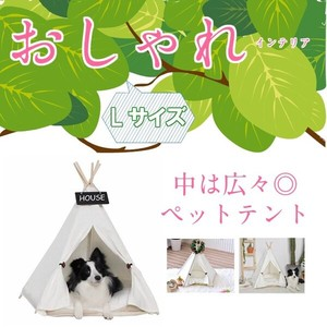 Cat Pet Tent Outdoors Indoor Triangle Camp