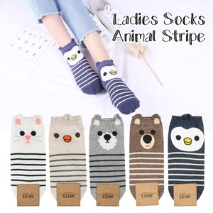 Korea Animal Stripe Socks Ladies Socks Free Size