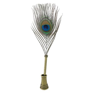 Wing pen Pen Holder Set Peacock