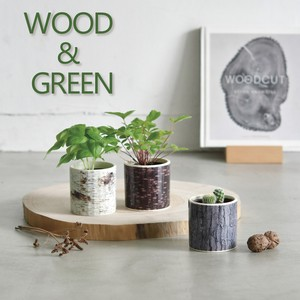 WOOD&GREEN ウッド&グリーン GD-896 栽培キット