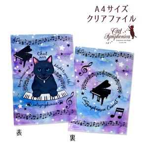 New Pattern A4 Plastic Folder Music Made in Japan