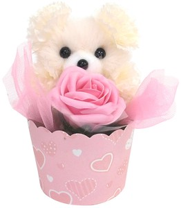 Flower Animal bear Ivory