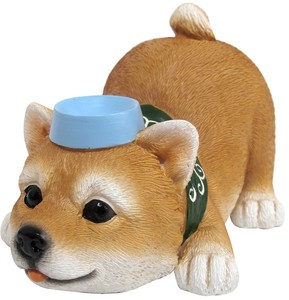 Real Animal Mascot Shiba Dog